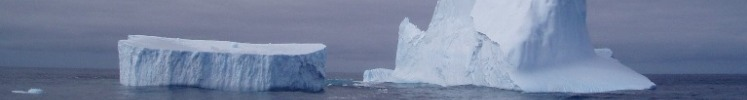 A couple of large icebergs in the southern ocean near Antarctica