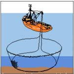 Diagram of Purse Seining fishing method